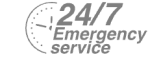 24/7 Emergency Service Pest Control in Barnehurst, DA7. Call Now! 020 8166 9746